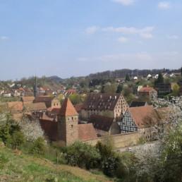 Sicht von den Weinbergen aufs Kloster